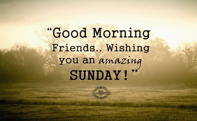 Good Morning Friends Wishing You An Amazing Sunday