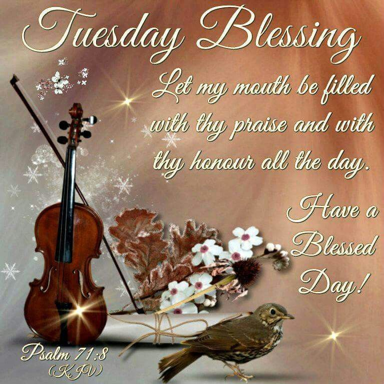 Tuesday Blessing Pictures Photos And Images For Facebook
