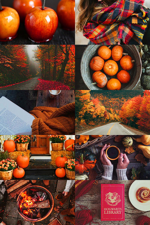 Funny Halloween Quotes And Sayings Wallpapers All About Fall Pictures Photos And Images For Facebook