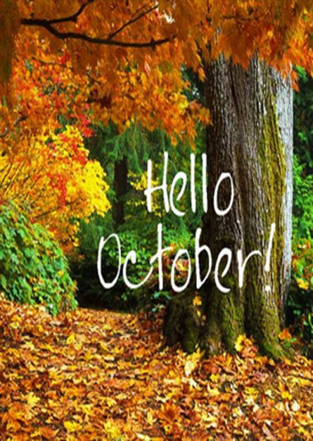 Bing Animated Wallpaper Hello October Pictures Photos And Images For Facebook