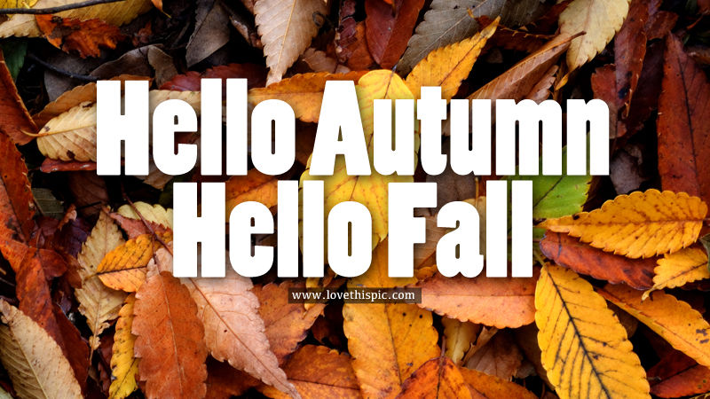 Happy Fall Wallpaper 1366x768 Hello Autumn Hello Fall Pictures Photos And Images For