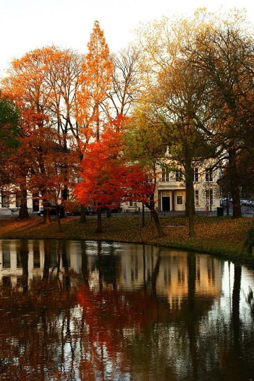 Netherlands Fall Wallpaper Beautiful Autumn Reflection Pictures Photos And Images