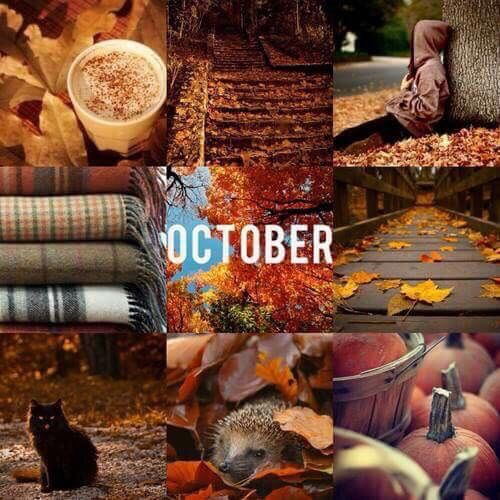 Happy Fall Desktop Wallpaper October Pictures Photos And Images For Facebook Tumblr