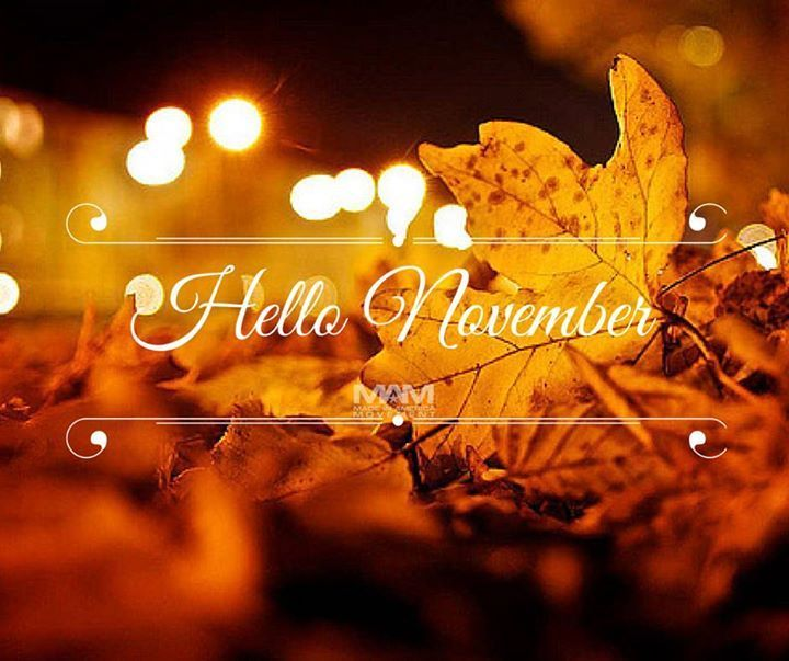 Blingee Cute Wallpaper Hello November Pictures Photos And Images For Facebook