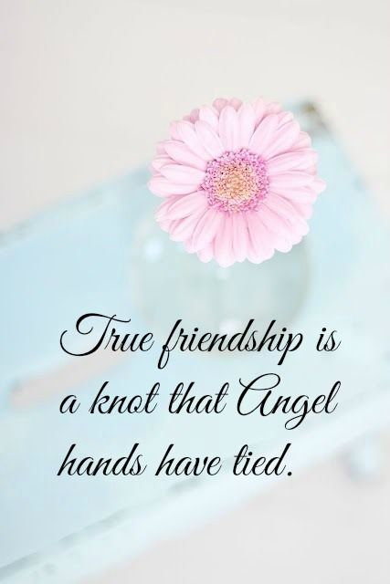 True Friendship Is A Knot That Angel Hands Have Tied