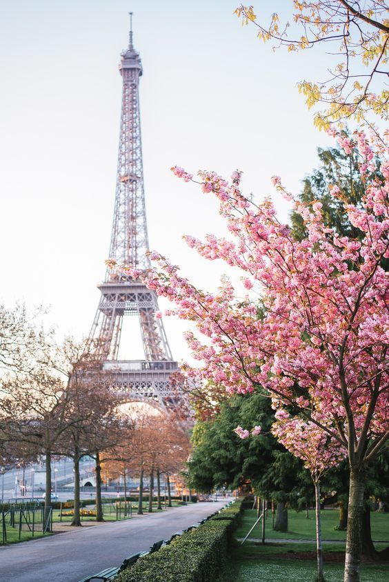 Spring Sayings Paris