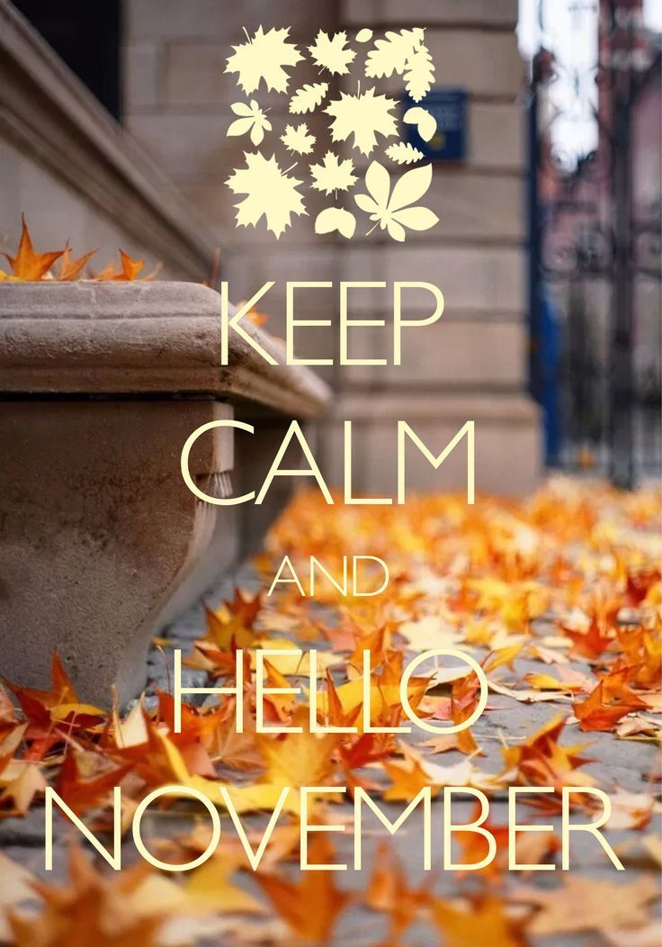 Cute 4th Of July Wallpaper Keep Calm And Hello November Pictures Photos And Images