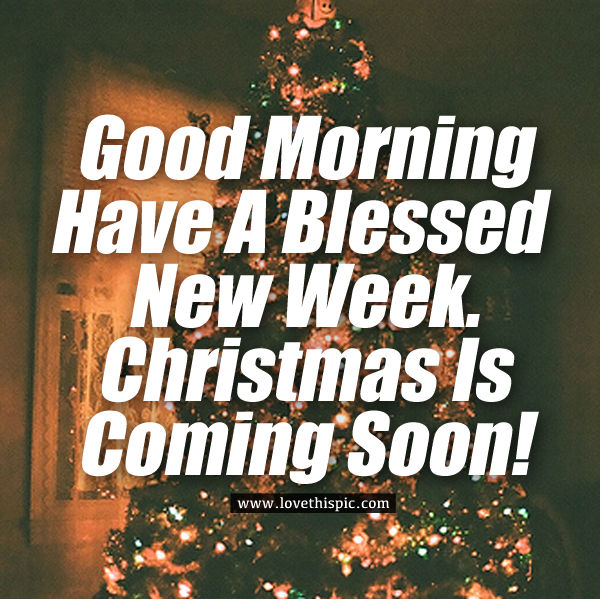 Wallpaper Fitness Quotes Good Morning Have A Blessed New Week Christmas Is Coming