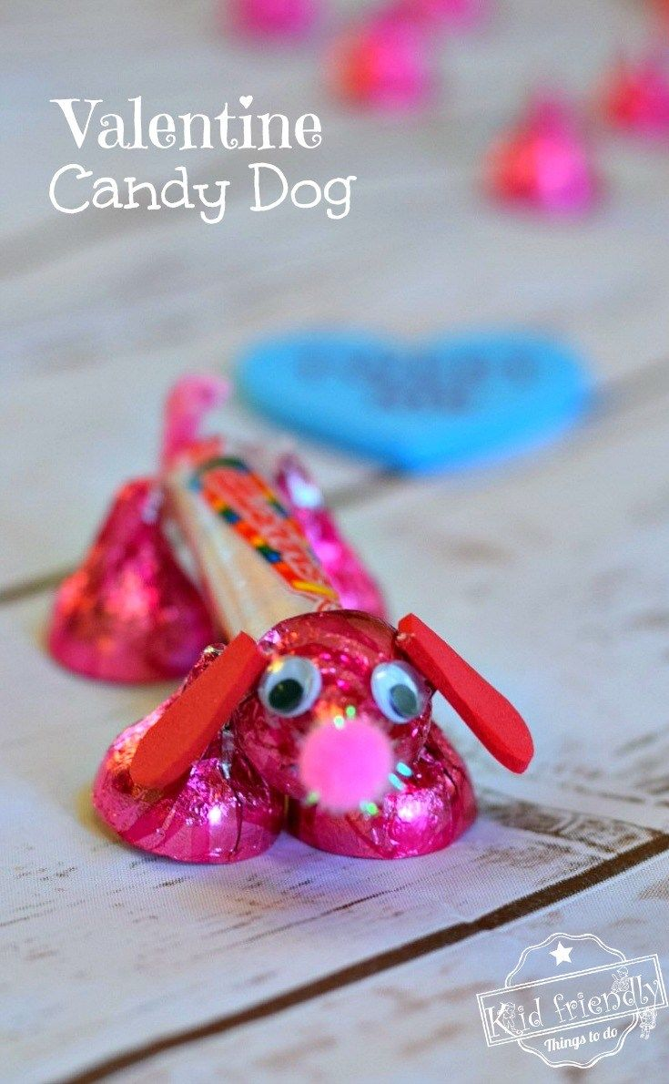Valentine Candy Dog Pictures Photos And Images For