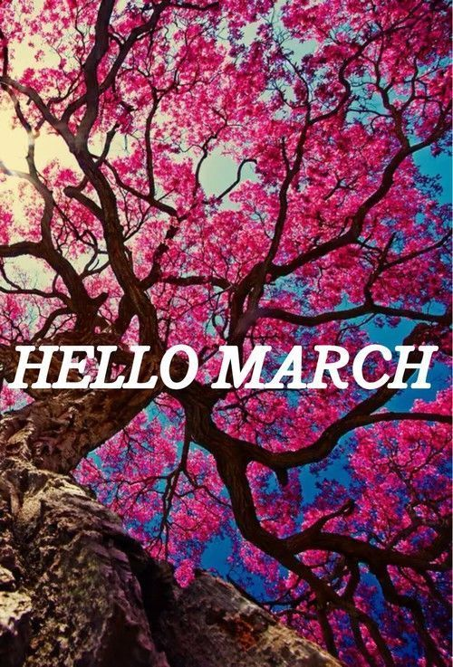 Cute St Patricks Day Wallpaper Tree Of Pink Flowers Hello March Pictures Photos And