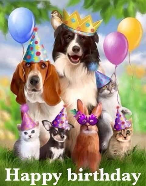 animal happy birthday graphic