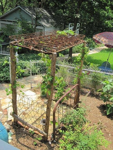 Iron Box Springs And Bed Rails As Garden Trellis Pictures