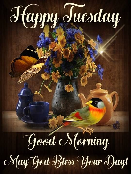 Tuesday Morning Happy Quotes Funny