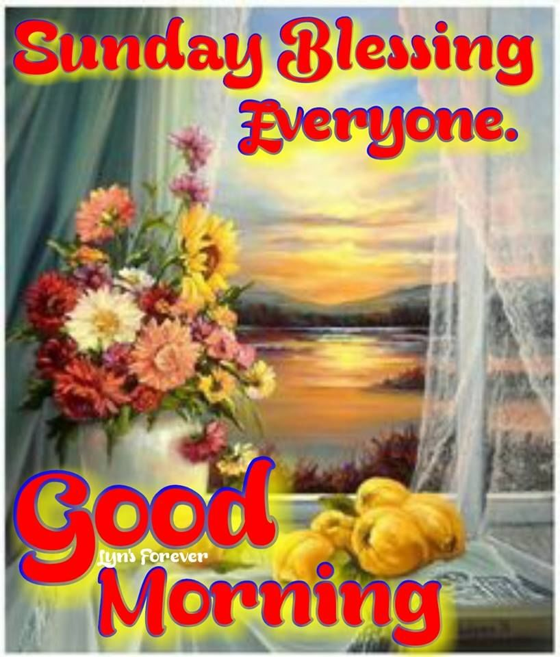 Sunday Blessing Everyone Good Morning Pictures, Photos, and Images for  Facebook, Tumblr, Pinterest, and Twitter