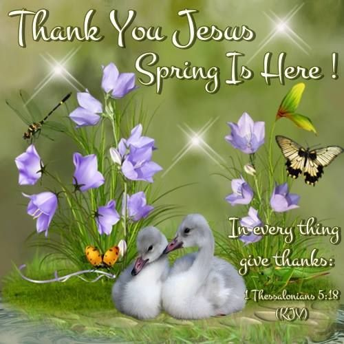 Thank You Jesus Spring Is Here Pictures Photos and