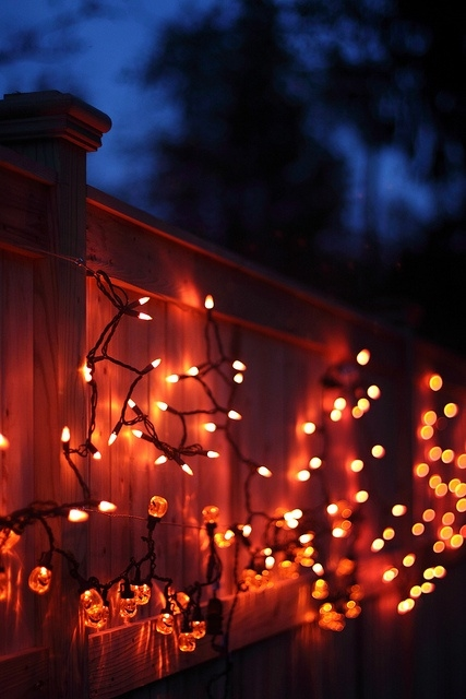 Halloween Decoration Lights Pictures Photos And Images For Facebook Tumblr Pinterest And Twitter