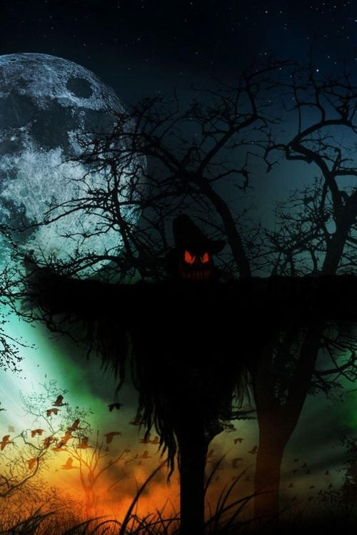 Gothic Fall Wallpaper Evil Scarecrow Pictures Photos And Images For Facebook