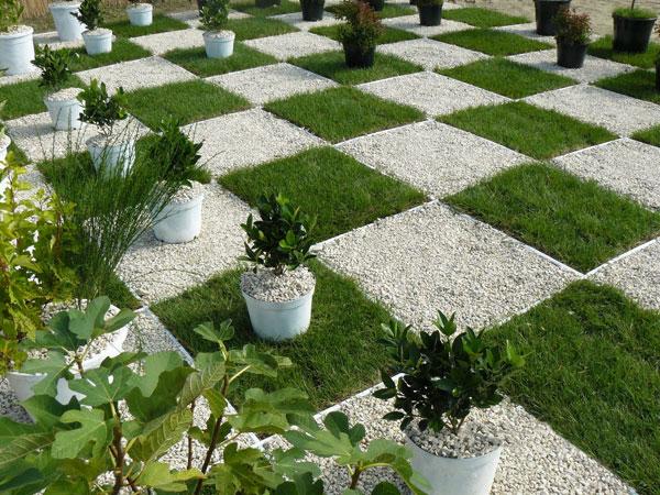 24 Impactful Landscape A Square Garden – Thorplc Com