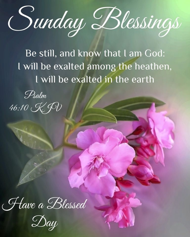 Sunday Blessings Pictures, Photos, and Images for Facebook, Tumblr, Pinterest, and Twitter