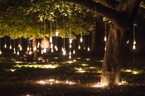 Lights In Trees For Wedding