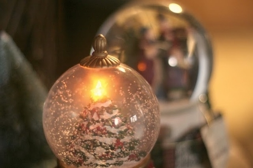 Christmas Snow Globe Pictures Photos and Images for