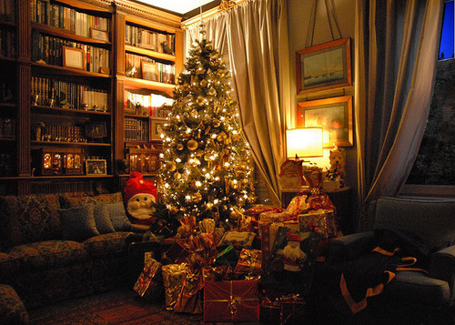 Christmas Tree In The Living Room Pictures Photos And Images For Part 36