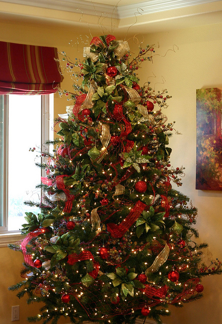 Perfect Christmas Tree Pictures Photos and Images for