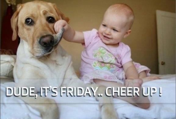 Cheer Up Its Friday Pictures. Photos. and Images for Facebook. Tumblr. Pinterest. and Twitter