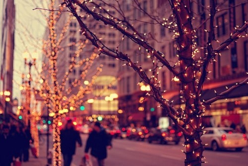Image result for christmas tree photography tumblr