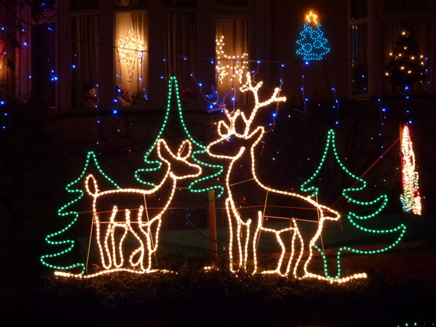 Lighted Deer