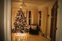 Christmas Tree In The Living Room Pictures, Photos, and ...