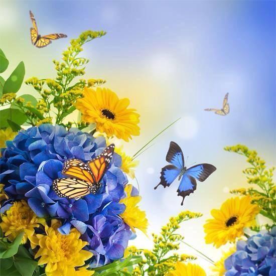 blue yellow flowers butterflies