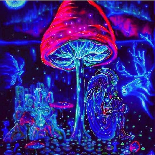 Cool Wallpaper Hd 1920x1080 3d Lol Cool Magic Mushrooms Pictures Photos And Images For Facebook