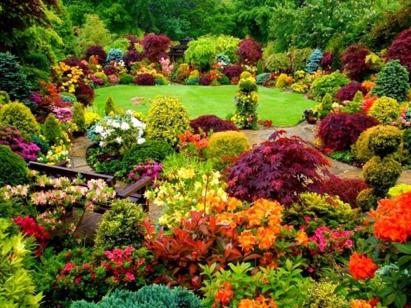Colorful Garden Pictures Photos and Images for Facebook Tumblr Pinterest and Twitter