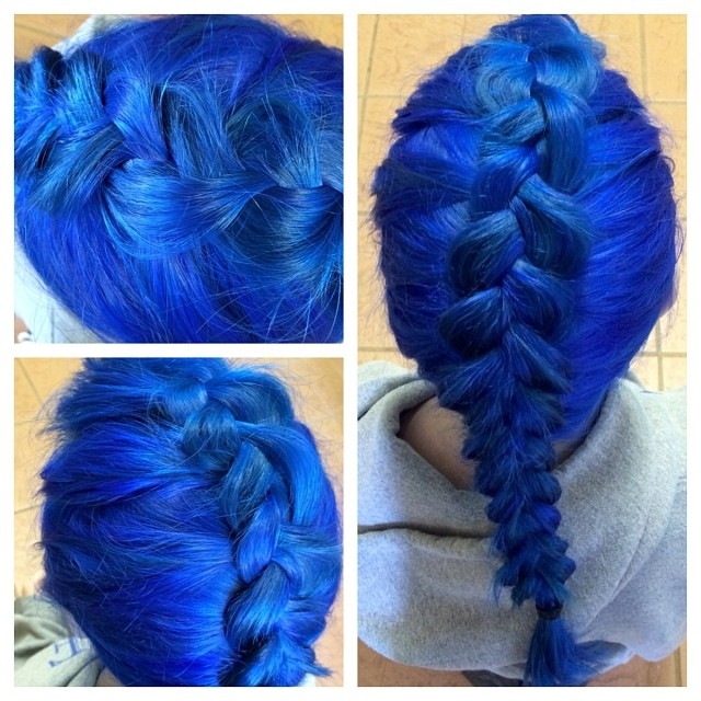Blue Fishtail Braid Pictures Photos And Images For