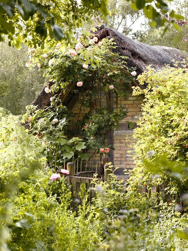 Cute Valentinesday Wallpaper Forest Witch Cottage Pictures Photos And Images For