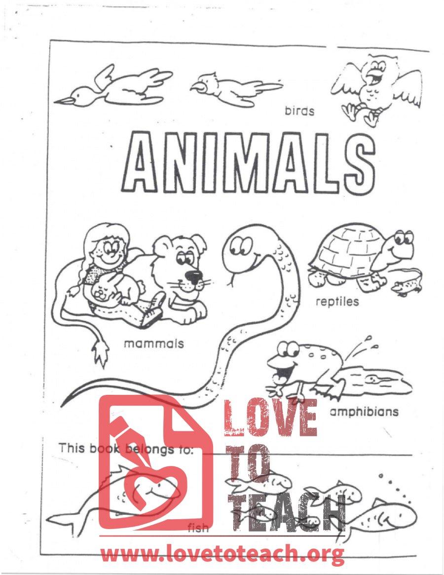 hight resolution of Animals - A Workbook of Fish