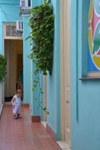 Zosia in Casa Israel, Havana