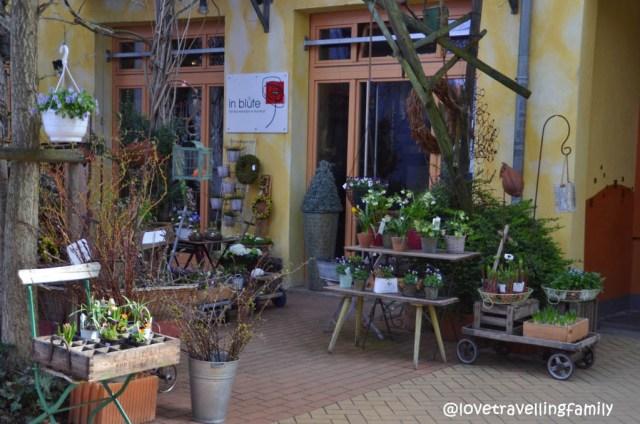 Flowershop in Kunsthofpassage, Neustadt, Dresden, Germany