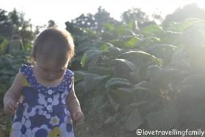 Zosia in Viñales, Cuba, Love travelling family