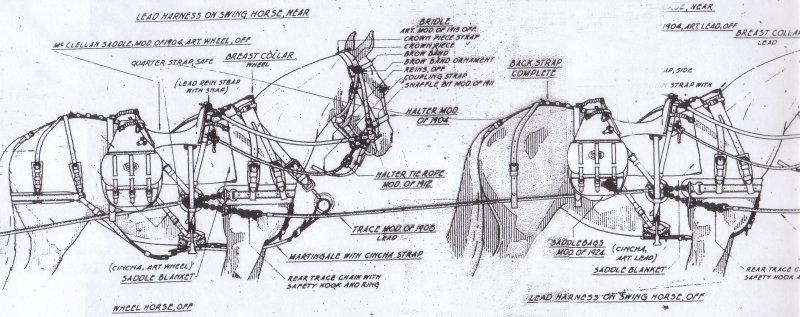 US Army Horse Drawn Equipment