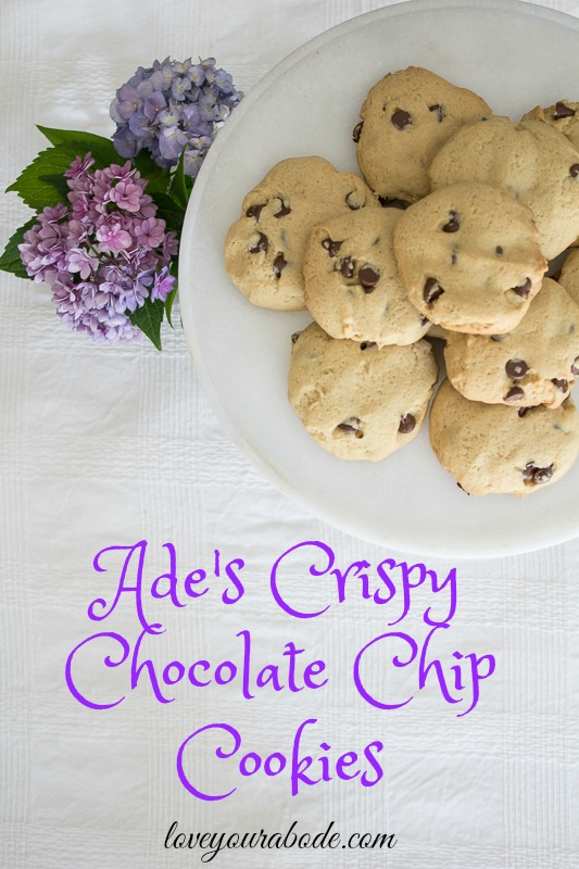 chocolate-chip-cookies-38