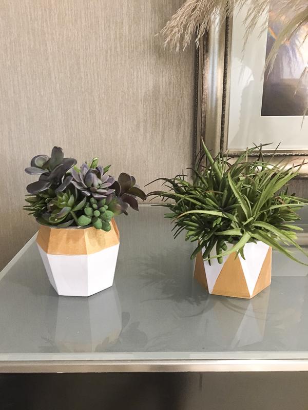 gold-pot-succulent-decoart-haven