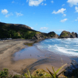 Piha Beach 4 small NZ