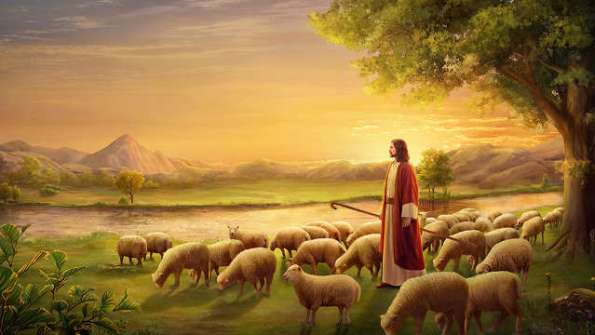 The Lord Jesus Christ Is Our Shepherd