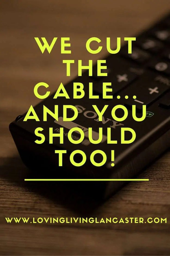 we cut the cable...and you should too!