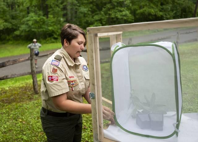 Eagle scout Albany Slentz adjusts a Monarch butterfly habitat at Keystone State Park on June 19, 2021.