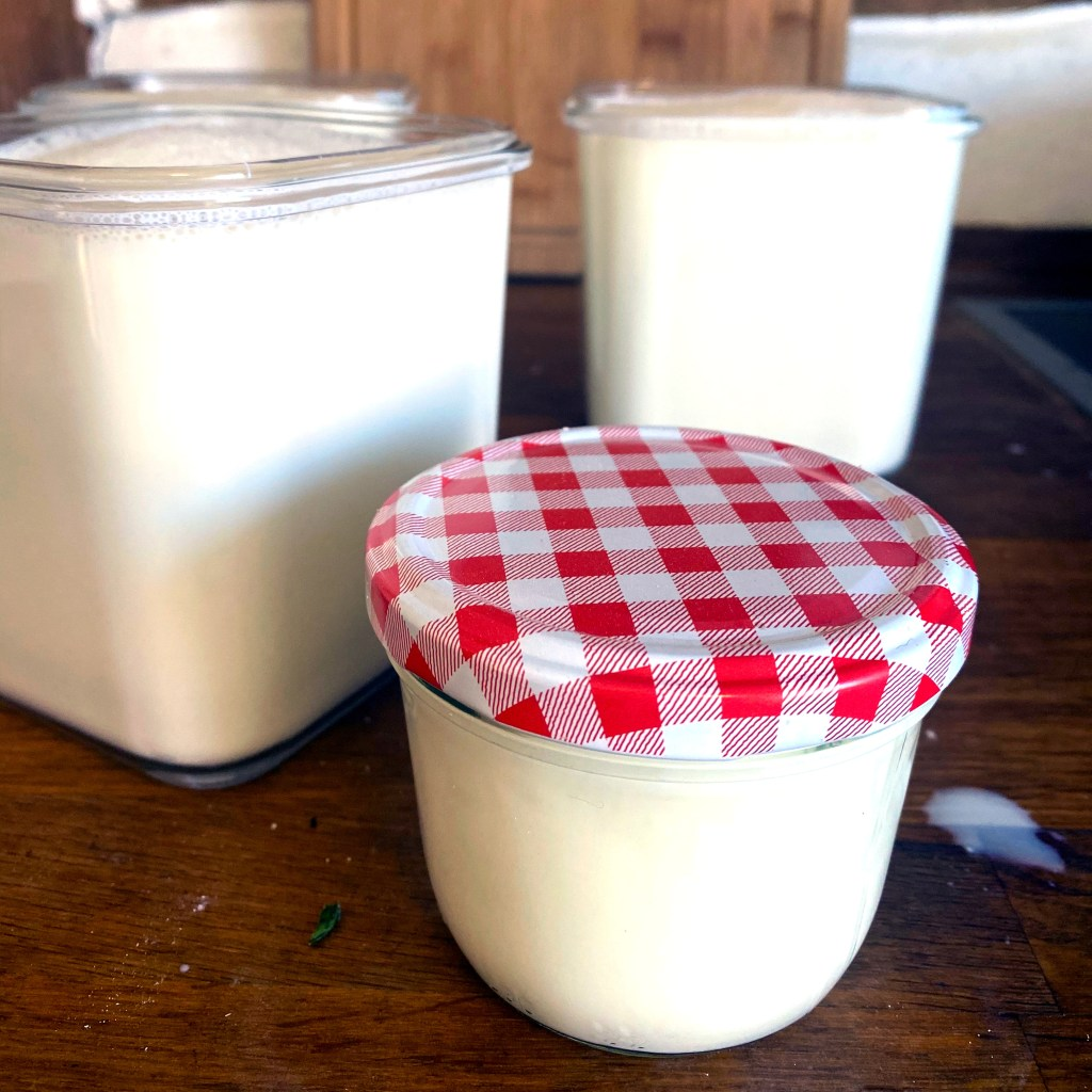 glass jars of newly made yogurt on a wooden board