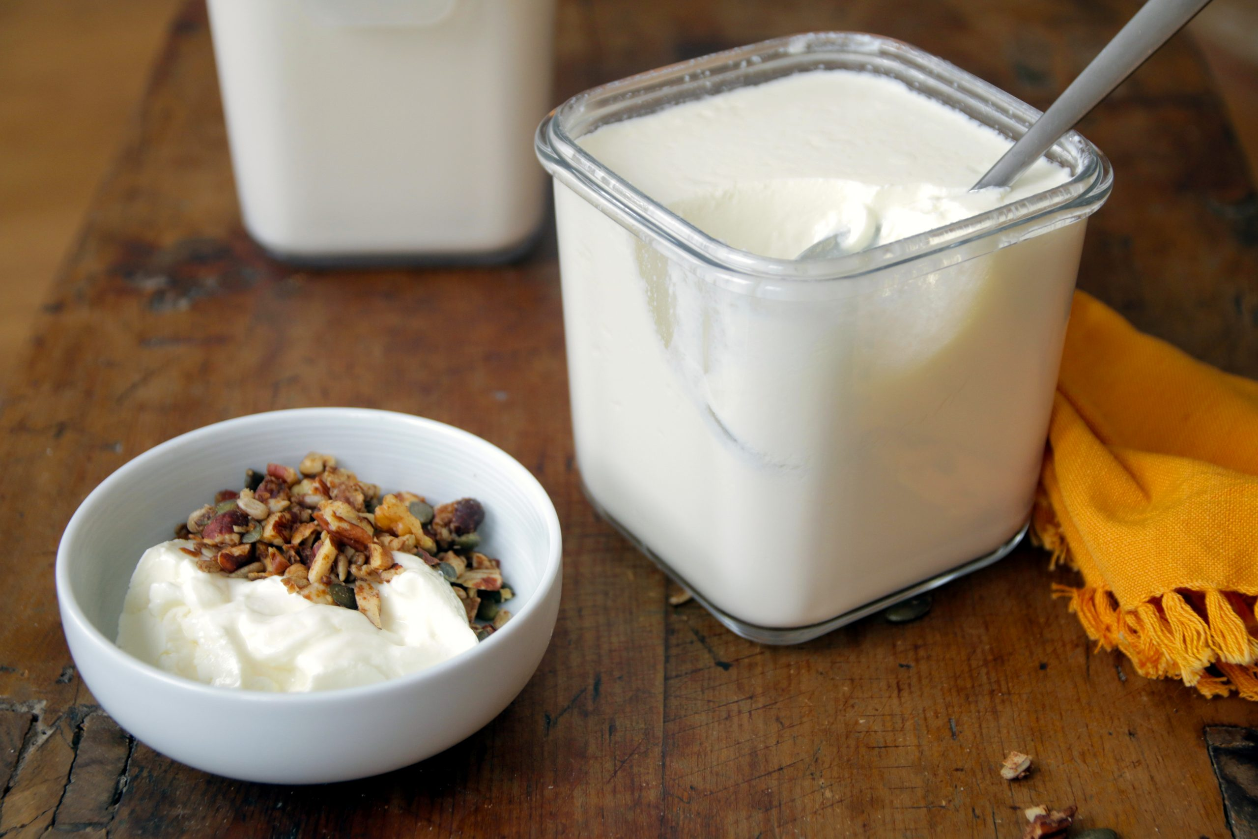 home made delicious yogurt – naturally low carb