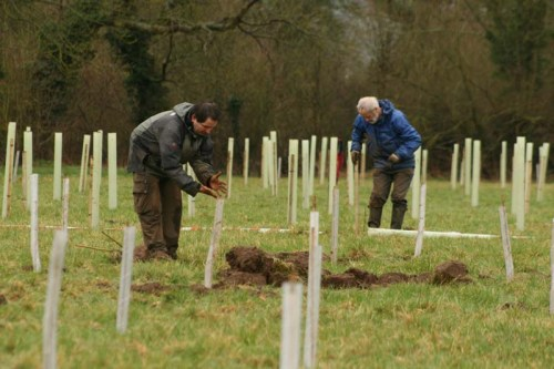Trees for Climate: Oxfordshire [Oxford FoE meeting] @ Wesley Memorial Hall